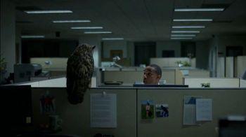 Western Governors University TV Spot, 'Owl Joke'