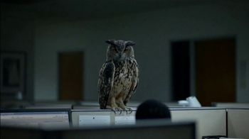 Western Governors University TV Spot, 'Owl Joke' - Thumbnail 2