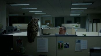 Western Governors University TV Spot, 'Owl Joke' - Thumbnail 3