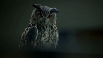 Western Governors University TV Spot, 'Owl Joke' - Thumbnail 4