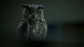 Western Governors University TV Spot, 'Owl Joke' - Thumbnail 7