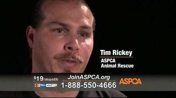 ASPCA TV Spot, 'Hope of a New Year' - Thumbnail 5
