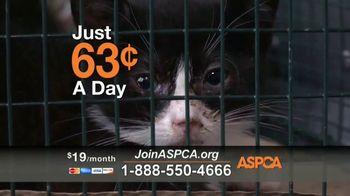 ASPCA TV Spot, 'Hope of a New Year' - Thumbnail 6