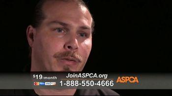 ASPCA TV Spot, 'Hope of a New Year' - Thumbnail 7