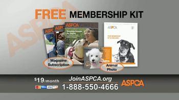 ASPCA TV Spot, 'Hope of a New Year' - Thumbnail 8