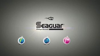 Seaguar TV Spot, 'What's the Difference?' - Thumbnail 9