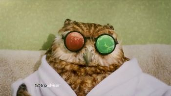 TripAdvisor TV Spot, 'Sun Bathing' - 1446 commercial airings