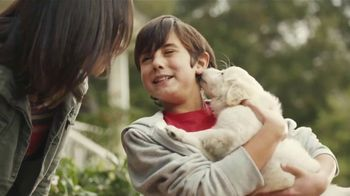 2018 Honda CR-V TV Spot, 'Mejores amigos' [Spanish] [T1] - Thumbnail 3