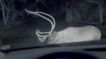 Maaco Overall Paint Sale TV Spot, 'Deer' - Thumbnail 2