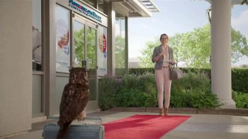 America's Best Contacts and Eyeglasses Designer Sale TV Spot, 'Red Carpet' - Thumbnail 4