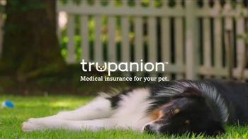 Trupanion TV Spot, \'Medical Insurance for Cats and Dogs\'