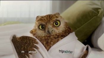 TripAdvisor TV Spot, 'Early Bird' - Thumbnail 1