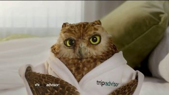 TripAdvisor TV Spot, 'Early Bird' - Thumbnail 3