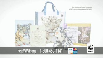 World Wildlife Fund TV Spot, 'Snow Leopards Are Being Killed' - Thumbnail 9