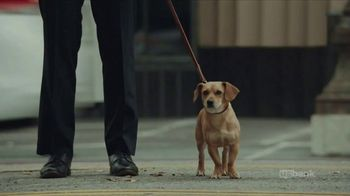 U.S. Bank Super Bowl 2018 TV Spot, 'No Dogs Allowed'