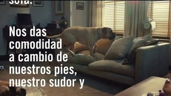Febreze TV Spot, 'Poemas de olor: sofá' [Spanish] - Thumbnail 3