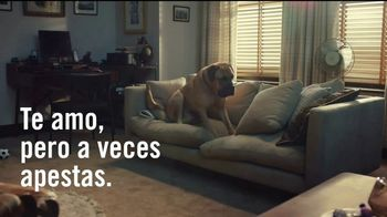 Febreze TV Spot, 'Poemas de olor: sofá' [Spanish] - Thumbnail 5