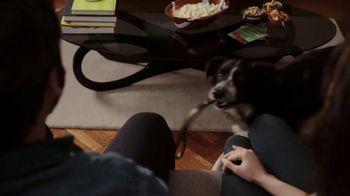 Rover.com TV Spot, 'Animal Planet: Puppy Bowl Sunday' - Thumbnail 1