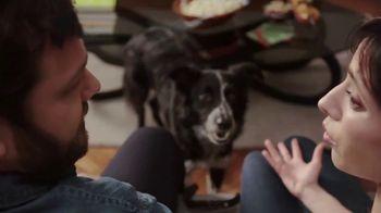 Rover.com TV Spot, 'Animal Planet: Puppy Bowl Sunday' - Thumbnail 3