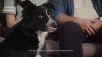 Rover.com TV Spot, 'Animal Planet: Puppy Bowl Sunday' - 6 commercial airings