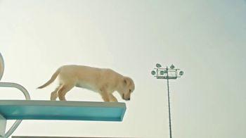 Pedigree TV Spot, 'Pup-letes: Diving' - Thumbnail 4
