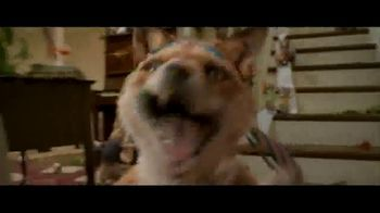 Peter Rabbit - Alternate Trailer 21