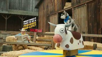 Pedigree TV Spot, 'Pup-letes: Stamina' - Thumbnail 1