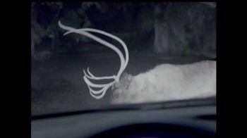 Maaco TV Spot, 'Deer: 33 Percent Savings' - Thumbnail 2