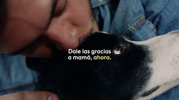 Western Union TV Spot, 'Gracias mamá' [Spanish] - Thumbnail 6