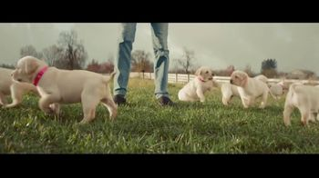 Canine Companions for Independence TV Spot, 'The Graduate'