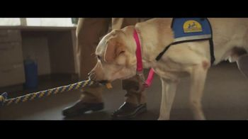 Canine Companions for Independence TV Spot, 'The Graduate' - Thumbnail 5