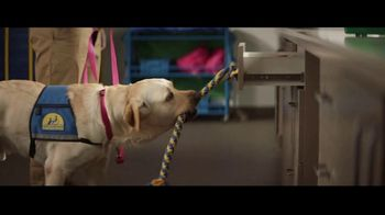 Canine Companions for Independence TV Spot, 'The Graduate' - Thumbnail 6