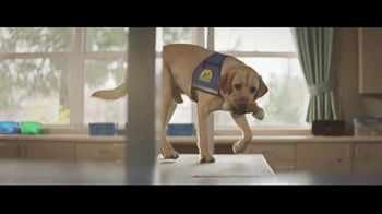 Canine Companions for Independence TV Spot, 'The Graduate' - Thumbnail 7