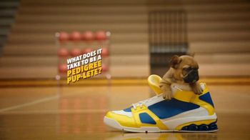 Pedigree TV Spot, 'Pup-letes: Tiny Sneakers' - Thumbnail 1