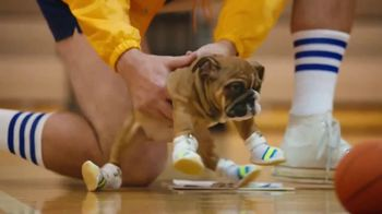 Pedigree TV Spot, 'Pup-letes: Tiny Sneakers' - Thumbnail 4