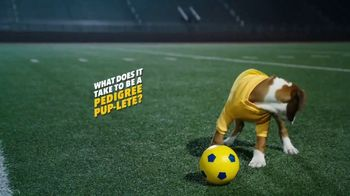 Pedigree TV Spot, 'Pup-lete: Good Acting' - Thumbnail 1