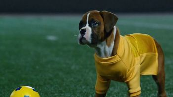 Pedigree TV Spot, 'Pup-lete: Good Acting' - Thumbnail 6
