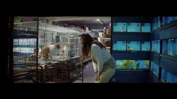 Planet Fitness TV Spot, 'The World Judges. We Don't: Cat' - Thumbnail 1