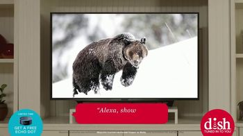Dish Network TV Spot, 'Find the Best Comedy on TV With Amazon Alexa' - Thumbnail 5