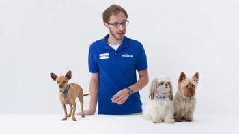 PetSmart TV Spot, 'Joey the Chihuahua'