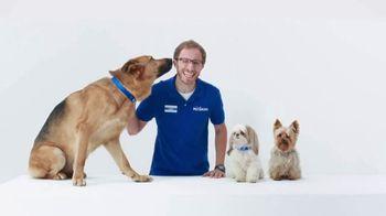 PetSmart TV Spot, 'Joey the Chihuahua' - Thumbnail 4