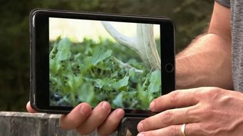 Primos Take Out Seed and Feed System TV Spot, 'Grow Great Hunts' - Thumbnail 4