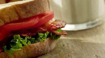 Sara Lee Artesano Bread TV Spot, 'Build Something Better' - 16 commercial airings