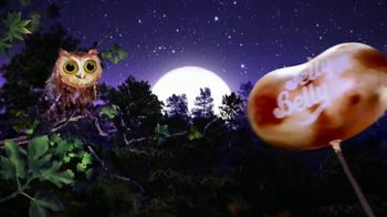 Jelly Belly Toasted Marshmallow TV Spot, 'Camp Fire'
