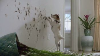 Lowe's TV Spot, 'The Moment: Laser Proof' - 2514 commercial airings