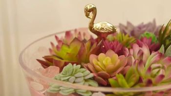Target TV Spot, 'HGTV: Succulent Bowl' - Thumbnail 2
