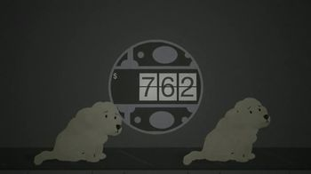 Best Friends Animal Society TV Spot, 'Puppy Mills' - Thumbnail 5