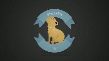 Best Friends Animal Society TV Spot, 'Puppy Mills' - Thumbnail 6
