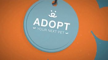 Best Friends Animal Society TV Spot, 'Puppy Mills' - Thumbnail 8