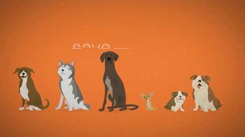 Best Friends Animal Society TV Spot, 'Puppy Mills' - Thumbnail 9
